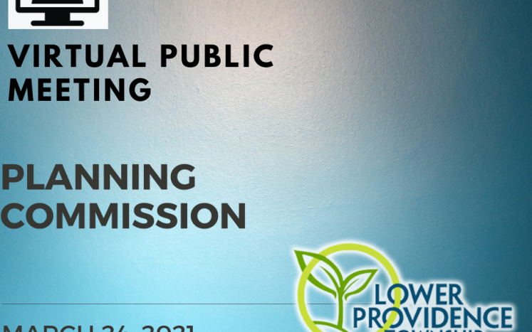 Virtual Planning Commission Meeting March 24, 2021