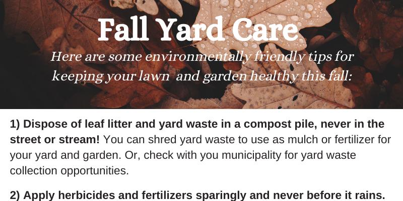 Fall yard care tips